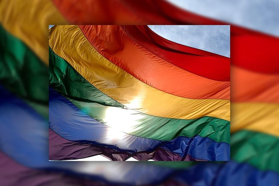 gay boys free vidoes